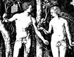 priroda-protiv-sodomii