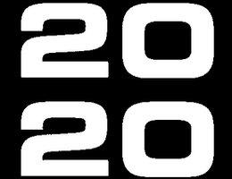 2020-itogi